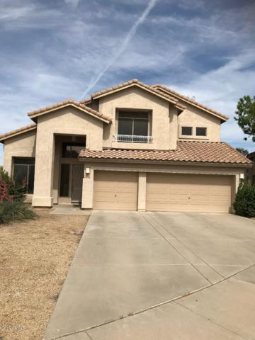 182 S Forest Court, Chandler, AZ 85226 (MLS #5920211) :: CC & Co. Real Estate Team