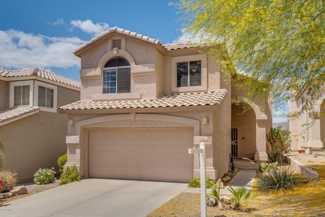 16614 S 21ST Street, Phoenix, AZ 85048 (MLS #5920243) :: Riddle Realty