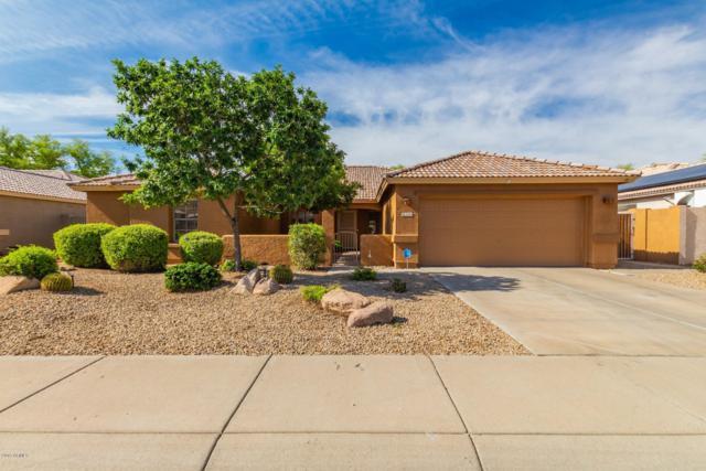 5331 W Morten Avenue W, Glendale, AZ 85301 (MLS #5920262) :: Team Wilson Real Estate