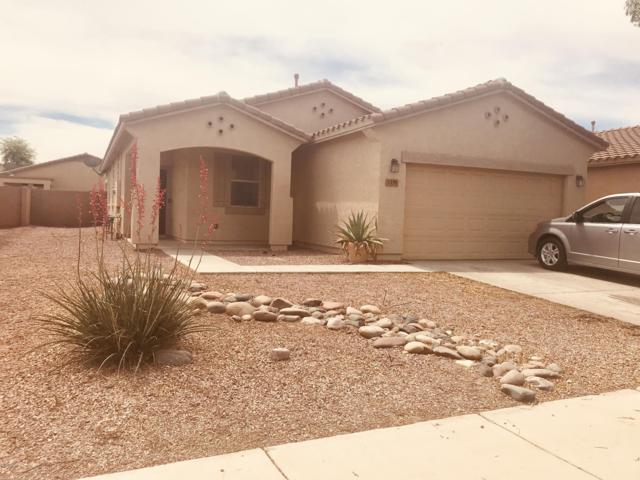 7333 W St Catherine Avenue, Laveen, AZ 85339 (MLS #5920305) :: Riddle Realty