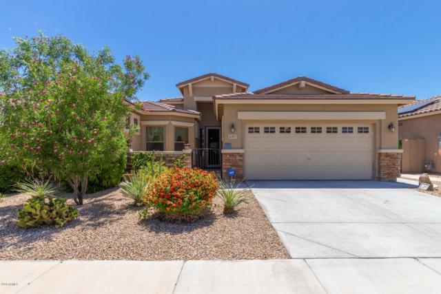 16805 W Hammond Street, Goodyear, AZ 85338 (MLS #5920907) :: Realty Executives