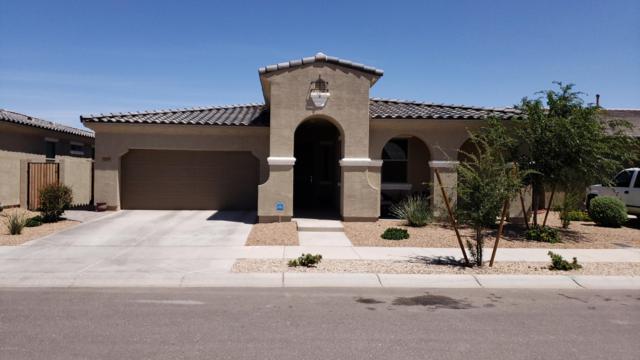 22522 E Sonoqui Boulevard, Queen Creek, AZ 85142 (MLS #5921012) :: Conway Real Estate