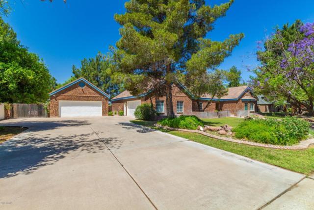 2306 N Hall Circle, Mesa, AZ 85203 (MLS #5921083) :: Occasio Realty