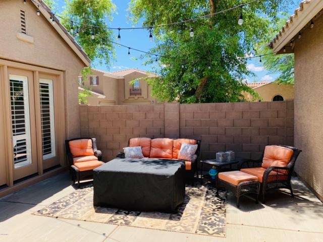 3041 S Kimberlee Court, Chandler, AZ 85286 (MLS #5921224) :: The Daniel Montez Real Estate Group