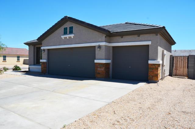 12005 W Rio Vista Lane, Avondale, AZ 85323 (MLS #5921380) :: CC & Co. Real Estate Team