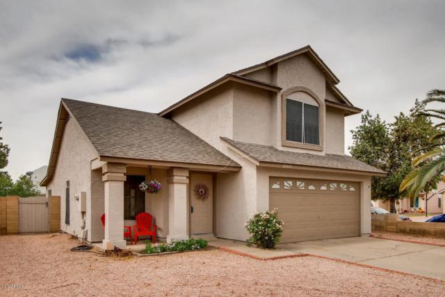 3869 W Elgin Street, Chandler, AZ 85226 (MLS #5921425) :: CC & Co. Real Estate Team