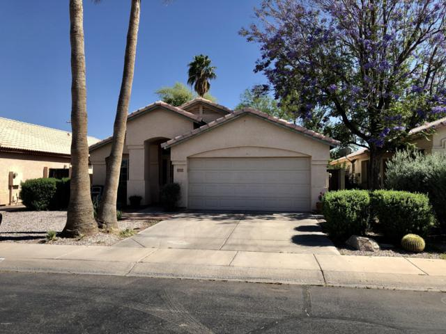 5945 W Geronimo Court N, Chandler, AZ 85226 (MLS #5921566) :: CC & Co. Real Estate Team