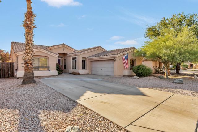 1672 S Hazel Street, Gilbert, AZ 85295 (MLS #5923063) :: CC & Co. Real Estate Team
