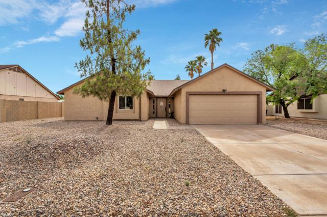 11915 N 79TH Avenue, Peoria, AZ 85345 (MLS #5923523) :: CC & Co. Real Estate Team