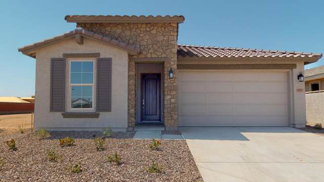 14555 W Dahlia Drive, Surprise, AZ 85379 (MLS #5923605) :: Conway Real Estate