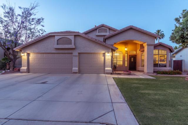1068 E Orchid Lane, Gilbert, AZ 85296 (MLS #5923666) :: CC & Co. Real Estate Team