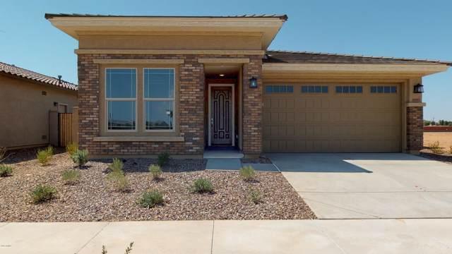 14563 W Dahlia Drive, Surprise, AZ 85379 (MLS #5924134) :: Conway Real Estate