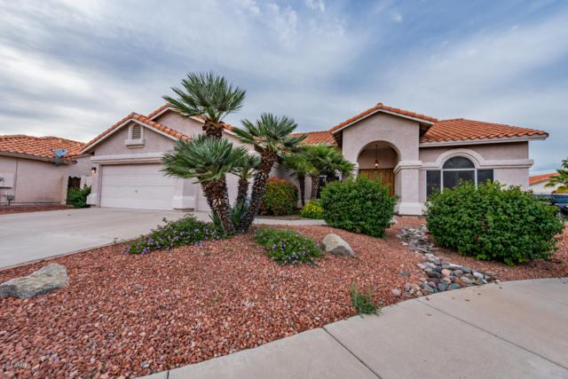 4636 E Evans Drive, Phoenix, AZ 85032 (MLS #5924135) :: CC & Co. Real Estate Team