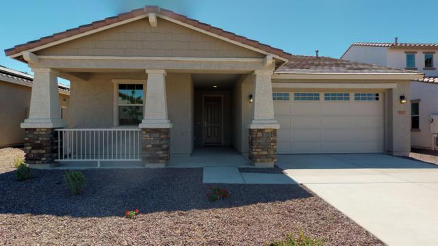 11223 N 189TH Lane, Surprise, AZ 85388 (MLS #5924364) :: The Garcia Group