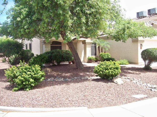 12826 W Saint Moritz Lane, El Mirage, AZ 85335 (MLS #5924662) :: Arizona 1 Real Estate Team
