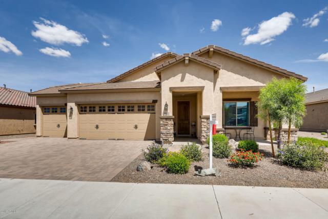 19953 N 260TH Glen, Buckeye, AZ 85396 (MLS #5924735) :: CC & Co. Real Estate Team