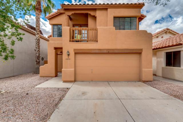 3509 E Verbena Drive, Phoenix, AZ 85044 (MLS #5924803) :: Yost Realty Group at RE/MAX Casa Grande