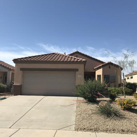 16189 W Montoya Drive, Surprise, AZ 85374 (MLS #5924960) :: Arizona 1 Real Estate Team