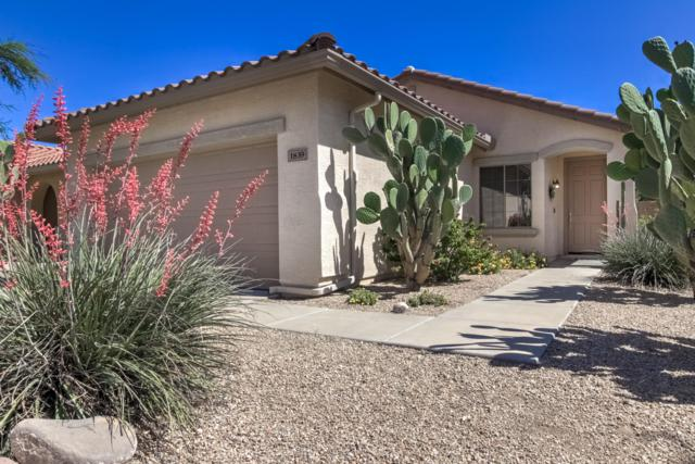 1839 W Kuralt Drive, Anthem, AZ 85086 (MLS #5925239) :: Revelation Real Estate