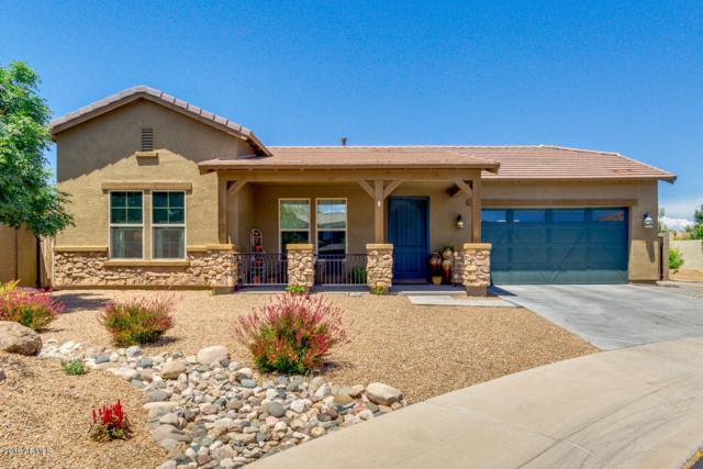 3772 E Turnberry Court, Gilbert, AZ 85298 (MLS #5925268) :: Brett Tanner Home Selling Team