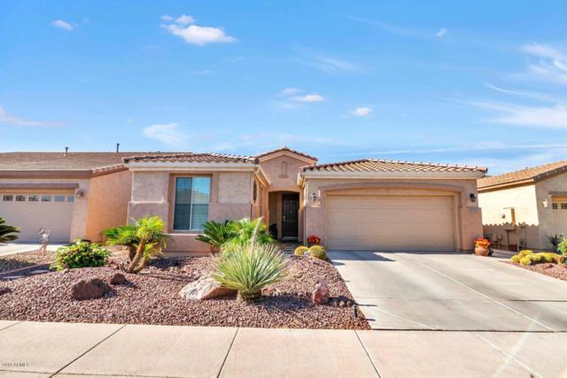 4111 E Appleby Drive, Gilbert, AZ 85298 (MLS #5925986) :: Revelation Real Estate