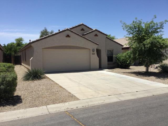 1701 E Christopher Street, San Tan Valley, AZ 85140 (MLS #5926352) :: Team Wilson Real Estate