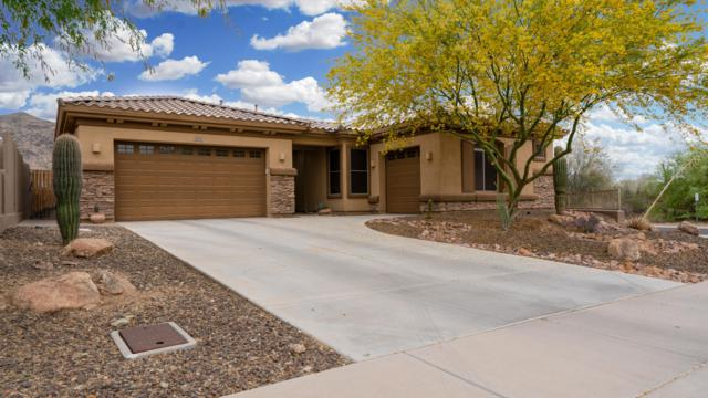 2704 W Nighthawk Way, Phoenix, AZ 85045 (MLS #5926453) :: Brett Tanner Home Selling Team
