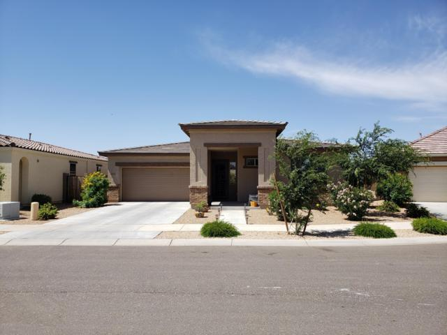 22516 E Creosote Drive, Queen Creek, AZ 85142 (MLS #5926638) :: Openshaw Real Estate Group in partnership with The Jesse Herfel Real Estate Group