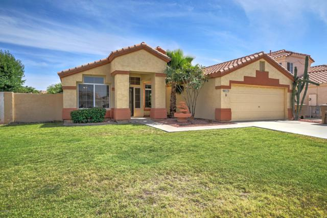 9179 W Michelle Drive, Peoria, AZ 85382 (MLS #5926647) :: The Pete Dijkstra Team
