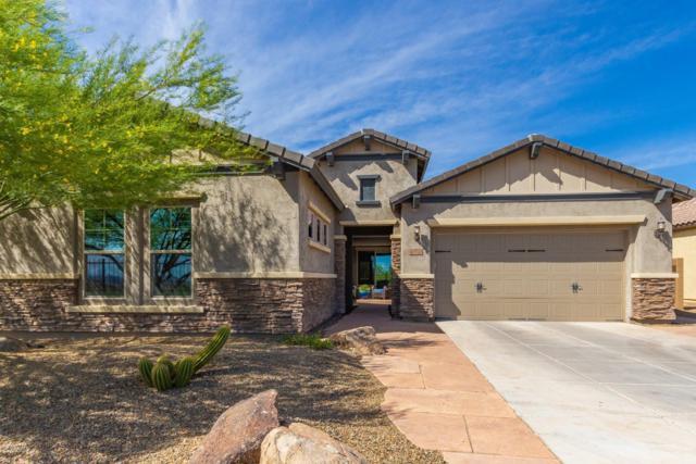 27523 N 16TH Avenue, Phoenix, AZ 85085 (MLS #5926665) :: Team Wilson Real Estate