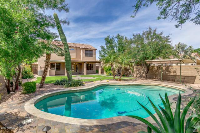 4701 W Oakland Street, Chandler, AZ 85226 (MLS #5926840) :: Openshaw Real Estate Group in partnership with The Jesse Herfel Real Estate Group