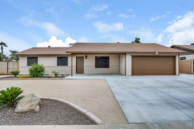 11002 N 40 Drive, Phoenix, AZ 85029 (MLS #5927100) :: CC & Co. Real Estate Team
