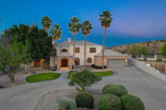 3633 E Coconino Place, Phoenix, AZ 85044 (MLS #5927375) :: Yost Realty Group at RE/MAX Casa Grande