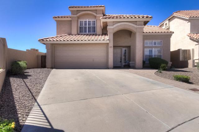 1204 E Silverwood Drive, Phoenix, AZ 85048 (MLS #5927382) :: Relevate | Phoenix