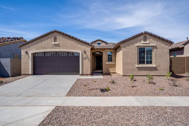 2820 W Pollack Street, Phoenix, AZ 85041 (MLS #5927390) :: CC & Co. Real Estate Team