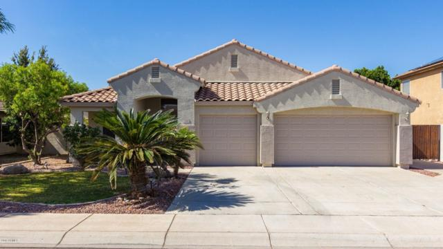 7846 W Robin Lane, Peoria, AZ 85383 (MLS #5927410) :: Lux Home Group at  Keller Williams Realty Phoenix