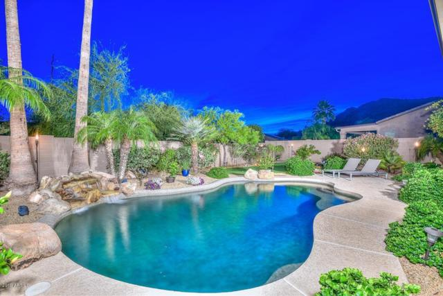 26020 N 42ND Drive, Phoenix, AZ 85083 (MLS #5927448) :: REMAX Professionals
