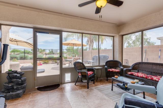 849 E Mule Train Trail, San Tan Valley, AZ 85143 (MLS #5927450) :: Revelation Real Estate