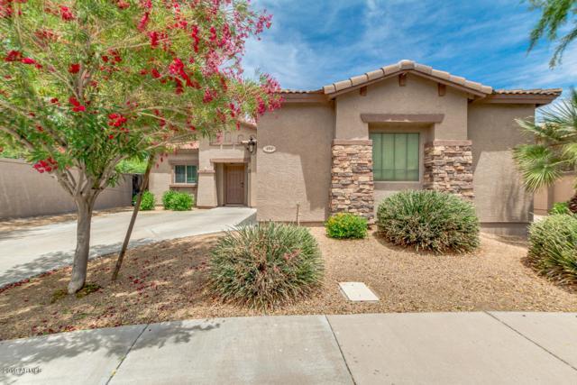 484 E Rainbow Drive, Chandler, AZ 85249 (MLS #5927595) :: CC & Co. Real Estate Team
