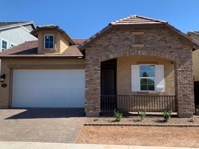 10104 E Nichols Avenue, Mesa, AZ 85209 (MLS #5927670) :: CC & Co. Real Estate Team