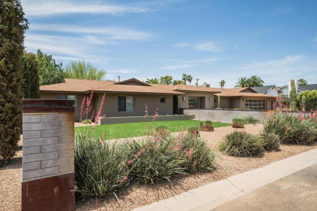5118 N 73RD Street, Scottsdale, AZ 85250 (MLS #5927706) :: The Pete Dijkstra Team