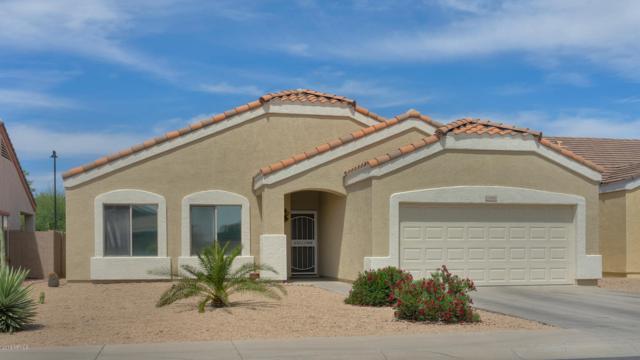 13392 N Alto Street, El Mirage, AZ 85335 (MLS #5928048) :: CC & Co. Real Estate Team