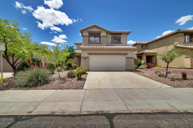 3535 W Steinbeck Court, Anthem, AZ 85086 (MLS #5928231) :: Riddle Realty