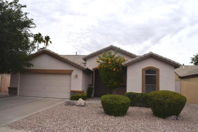 595 S Newport Street, Chandler, AZ 85225 (MLS #5928380) :: Realty Executives