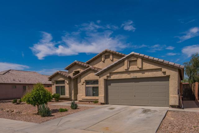 3916 W Potter Drive, Glendale, AZ 85308 (MLS #5928599) :: Yost Realty Group at RE/MAX Casa Grande
