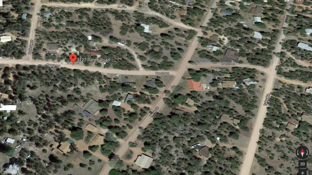3127 E Ranch Road, Overgaard, AZ 85933 (MLS #5928656) :: Yost Realty Group at RE/MAX Casa Grande