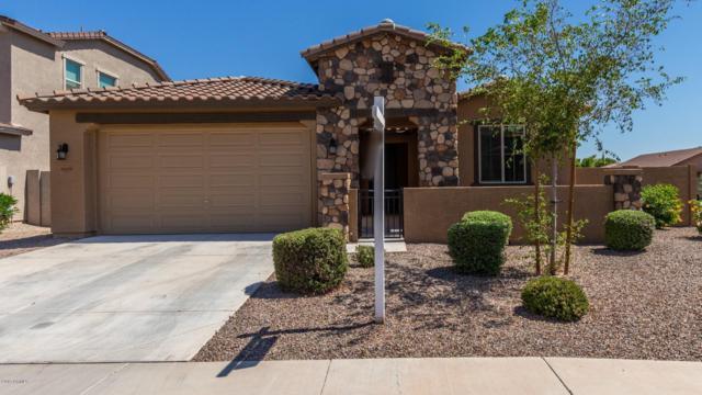 16889 W Monroe Street, Goodyear, AZ 85338 (MLS #5928659) :: Conway Real Estate