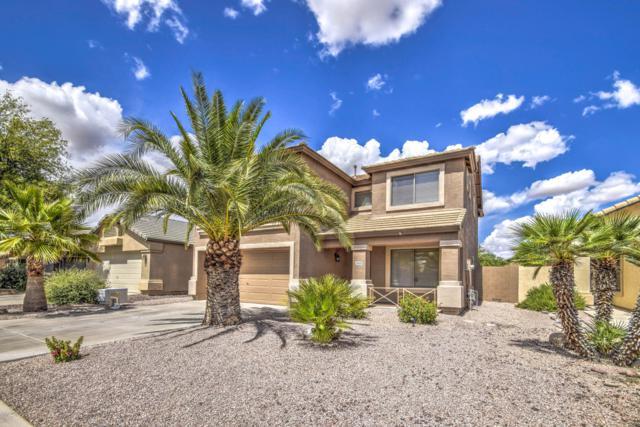 29689 N Blackfoot Daisy Drive, San Tan Valley, AZ 85143 (MLS #5928812) :: Arizona 1 Real Estate Team