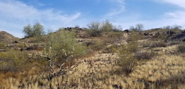 7229 W Miner Trail, Peoria, AZ 85383 (MLS #5928822) :: The Carin Nguyen Team