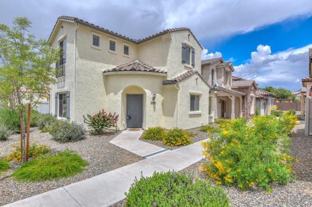 26505 N Babbling Brook Drive, Phoenix, AZ 85083 (MLS #5928868) :: The Laughton Team